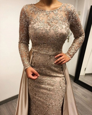 ZY264 Designer Evening Dresses Long With Sleeves Lace Mother Of The Bride Dresses Cheap_3