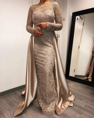 ZY264 Designer Evening Dresses Long With Sleeves Lace Mother Of The Bride Dresses Cheap_2