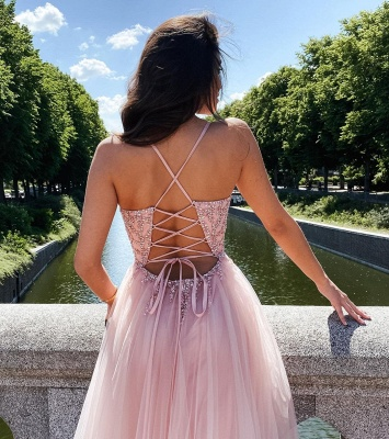 ZY355 Elegant Evening Dresses Long Pink Evening Wear V Neckline_3